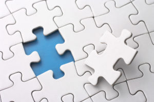 Human Synergies Our Services